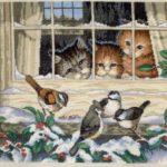 кошки наблюдают