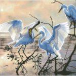 Аисты. птицы счастья