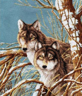 Лесные гости