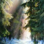 Дорога через зимний хвойный лес