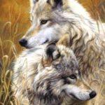 Волчья верность от Овен