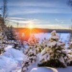 Солнце садится в зимнем лесу